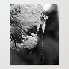 hanging on Canvas Print