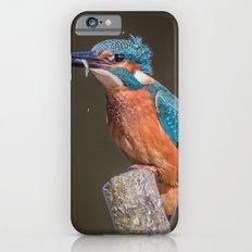 Kingfisher Slim Case iPhone 6s