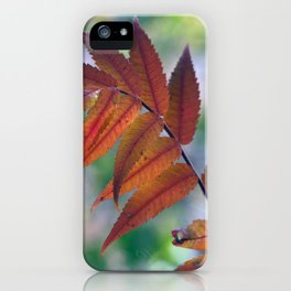 Where The Red Fern Grows iPhone Case