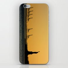 South Ferry Sunset iPhone & iPod Skin