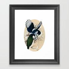 Resplendent Magpie Framed Art Print