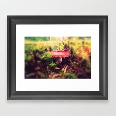 To Be Small, You Must Be Aware of Giants Framed Art Print