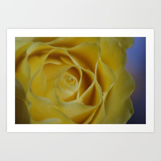 Soft Sherbet Lemon Petals Art Print