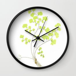 Maidenhair Fern Wall Clock