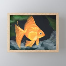 Gold fish Framed Mini Art Print