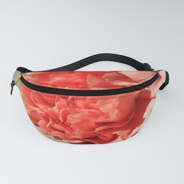 What Will Follow Fanny Pack