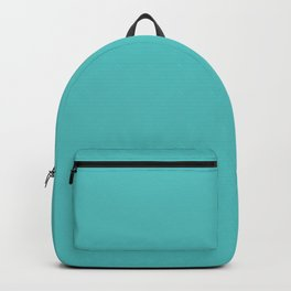 "Dunn & Edwards 2019 Trending Colors ""Port Hope"" (Light Aqua Blue /Teal / Turquoise) DE5731 Solid Col Backpack"