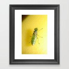 Alien Fly (iPhone skin) Framed Art Print