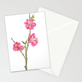 pink peach flower blossoms watercolor Stationery Cards