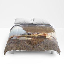 Mr.Crab at Haystack Rock #2 Comforters