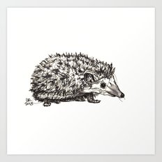 Woodland Creatures: Hedgehog Art Print