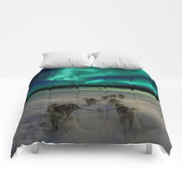 Winter Northern Lights Dog Sled (Color) Comforters