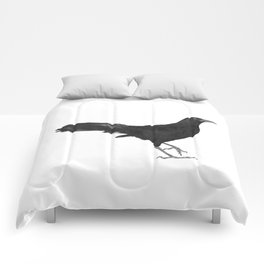 Great-tailed grackle Comforters