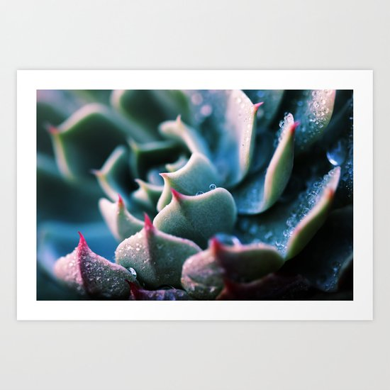 There's Glory in the Little Things - succulent plant macro Art Print