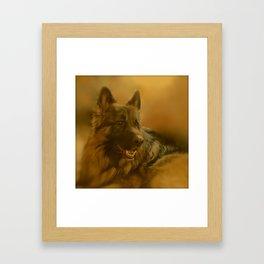 Golden King Shepherd Framed Art Print