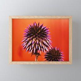 Purple Thorns Framed Mini Art Print