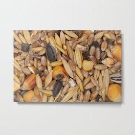 Bird Seeds Pattern Photograph Metal Print