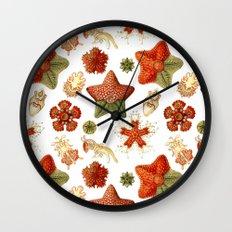 Sea Stars And Star Fish Wall Clock