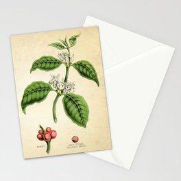 Coffee Art Print, Kitchen Art Print, Coffee Poster, Coffee Plant Botanical Print, Coffee Tree, Coffee Plant Art Print, Kitchen Decor Print Stationery Cards