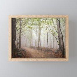 A Walk In The Foggy Forest Framed Mini Art Print