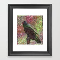 Tantalizing Turkey Vulture Framed Art Print