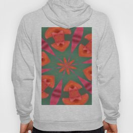 Succulent Red and Yellow Flower Abstract I Hoody