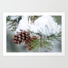 After the Snow Art Print