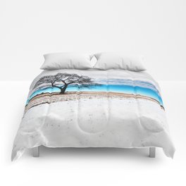 Divided Winter Comforters