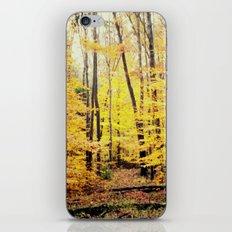 The Glow iPhone & iPod Skin