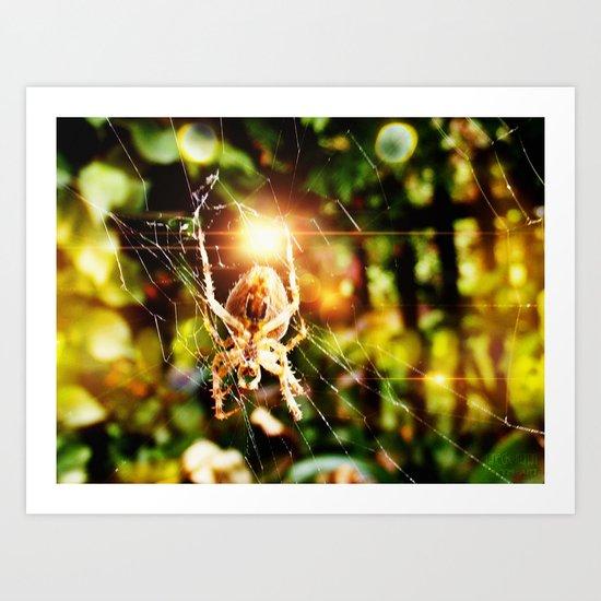 Spider Bokeh Art Print