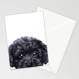 Black toy poodle Dog illustration original painting print Stationery Cards