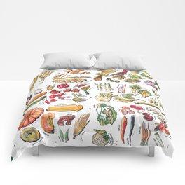 Vegetable Encyclopedia Comforters