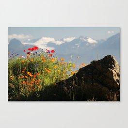 Springtime in the Mountains, Homer, Alaska Canvas Print