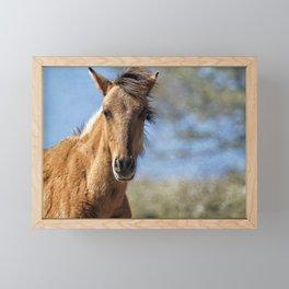 Oracle - Pryor Mustangs Framed Mini Art Print
