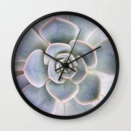 Nature Photography | Cactus Art | Pink and Blue Succulent | Plant | Botanical Wall Clock