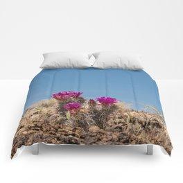 Desert Cacti in Bloom - 4 Comforters