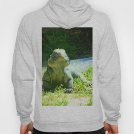 Iguana and Chill Hoody