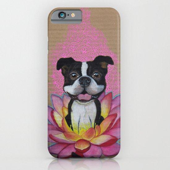 Zen Boston Terrier iPhone & iPod Case