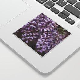 Spring - Wisteria Sticker