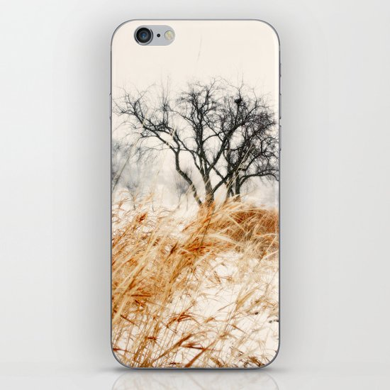 Winter Lanscape 2 iPhone & iPod Skin