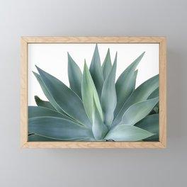 Agave blanco Framed Mini Art Print
