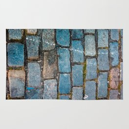 Rocks on the streets Rug