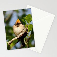 Singing swallow Stationery Cards