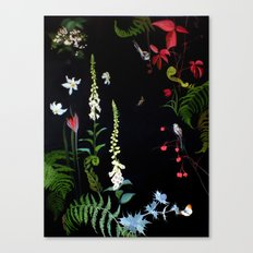 Foxgloves, Ferns and Long-tailed Tits Canvas Print
