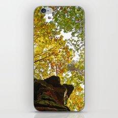 Beautiful fall iPhone & iPod Skin