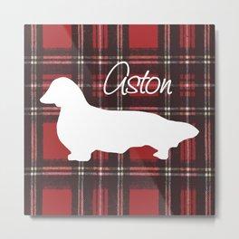 Custom Longhair Dachshund, Aston Metal Print