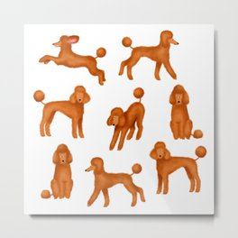 Red Poodles Pattern Metal Print