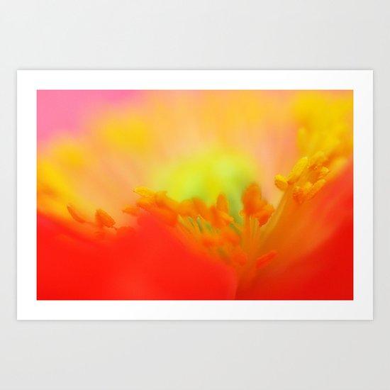 Psychedelic Poppy Sunset  Art Print