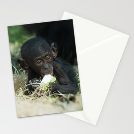 Lola The Bonobo Baby Stationery Cards