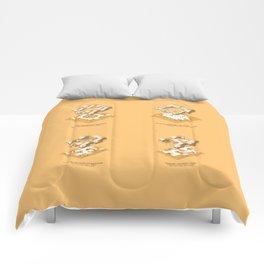 Typology Comforters